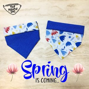 spring is coming dog bandana