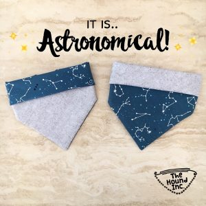 astronomical dog bandana