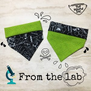 from the lab dog bandana